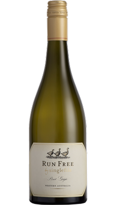 2020 Run Free by Singlefile Pinot Grigio